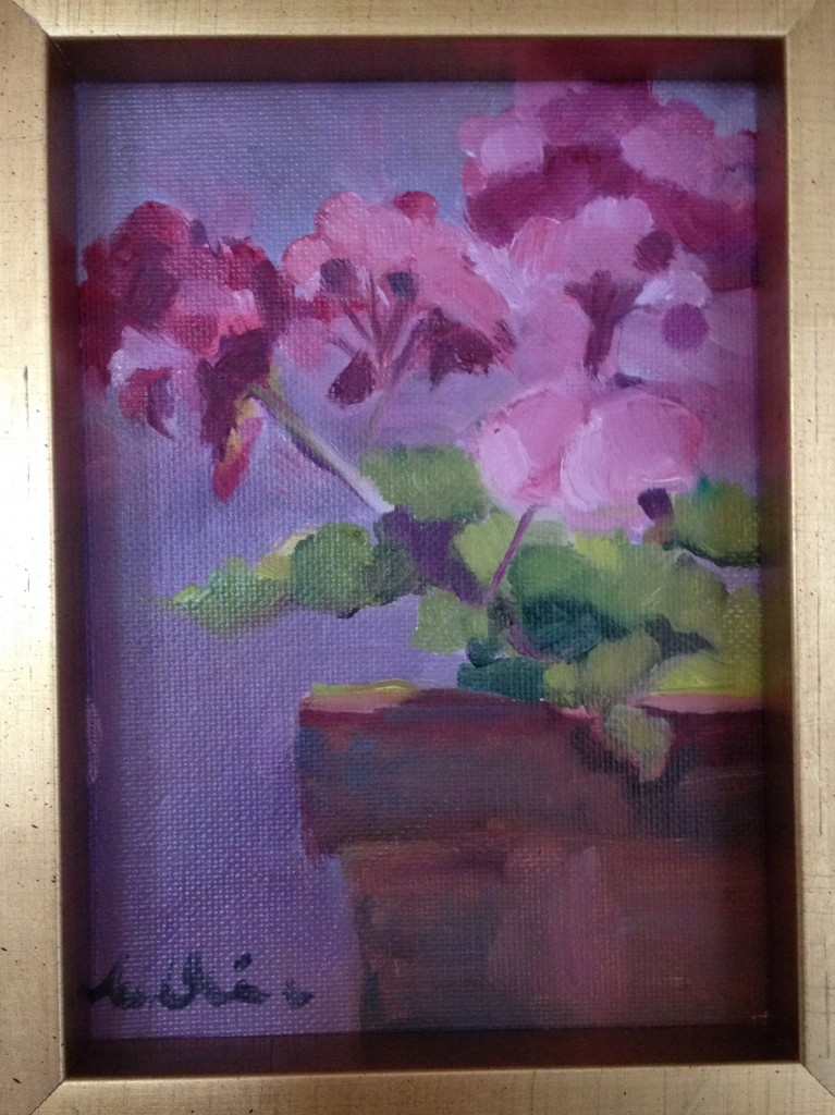 pink-geraniums-nancy-nickerson